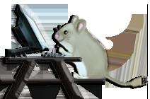 computer repair brookings, oregon, computer service brookings oregon, computer tutoring brookings, oregon, computer lessons brookings, oregon, computer repair, computer service, computer help, remote access support, computer lessons, computer how to, computer tutorials